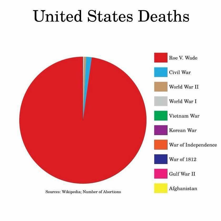 Roe V Wade Death Pie Chart 1 Beyond Common Sense