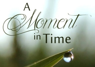 BookCoverImage for A moment in time